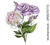 hand drawn bouquet of rose and... | Shutterstock . vector #690075772