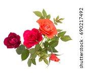 colorful rose flower bouquet... | Shutterstock . vector #690217492