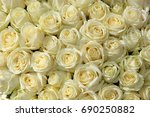 big group of white roses as... | Shutterstock . vector #690250882