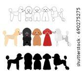 set of poodle group | Shutterstock .eps vector #690275275