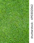 Small photo of Background of a green grass. Green grass texture. Green grass texture from a field.