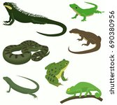 reptiles and amphibians... | Shutterstock .eps vector #690380956