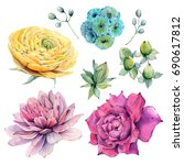 watercolor flowers set in... | Shutterstock . vector #690617812