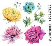 watercolor flowers set in... | Shutterstock . vector #690617812