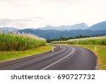 a tall crop of sugar cane... | Shutterstock . vector #690727732
