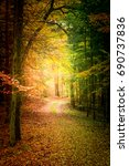 colorful autumn in the forest... | Shutterstock . vector #690737836
