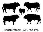 Standing Adult Bull Vector...