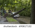 Tree Fallen On A Car After A...