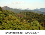Overview of lush tropic forest vegetation - stock photo