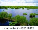 ten thousand islands national...   Shutterstock . vector #690950122