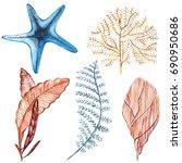 coral set. aquarium concept for ... | Shutterstock . vector #690950686