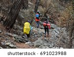 group hikers in forest | Shutterstock . vector #691023988