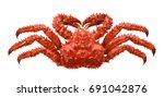 red brown king crab isolated on ... | Shutterstock . vector #691042876