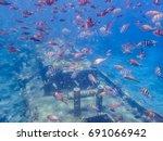 Tug Boat Snorkel Site    ...