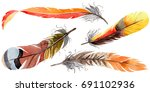 watercolor bird feather from... | Shutterstock . vector #691102936