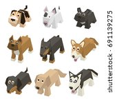 vector set of different breed... | Shutterstock .eps vector #691139275