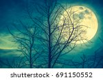 night landscape of sky and... | Shutterstock . vector #691150552