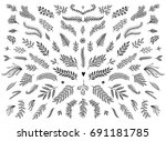 hand sketched floral design... | Shutterstock .eps vector #691181785