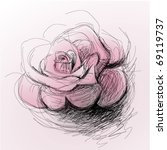 rose flower   realistic sketch  ... | Shutterstock .eps vector #69119737