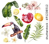 watercolor set with tropical... | Shutterstock . vector #691238512