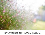background with tiny purple... | Shutterstock . vector #691246072