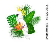 tropical plants leaves flower... | Shutterstock .eps vector #691272016