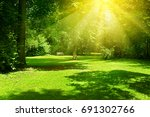 bright sunny day in park. the... | Shutterstock . vector #691302766
