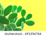 cactus fashion set. sweet... | Shutterstock . vector #691356766