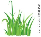 fragment of a green grass... | Shutterstock . vector #691375546