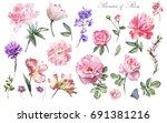 set watercolor elements of... | Shutterstock . vector #691381216