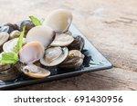 fresh enamel venus shell ... | Shutterstock . vector #691430956