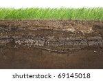 cross section of green grass... | Shutterstock . vector #69145018