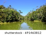 Small photo of Lac Vert, green lake, in the rainforest of Andasibe national park, Madagascar