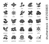 spices glyph icons set....   Shutterstock .eps vector #691503805