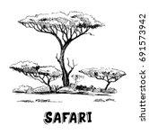sketch of the african savanna... | Shutterstock .eps vector #691573942