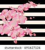 eps10 vector   pink orchid on a ...