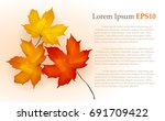 autumn maple leaves background | Shutterstock .eps vector #691709422