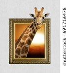 Giraffe in old wooden frame...