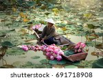 agriculture is harvesting lotus ... | Shutterstock . vector #691718908