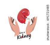 hand with kidney. hope for... | Shutterstock .eps vector #691721485
