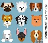 dog. a pet. vector illustration.... | Shutterstock .eps vector #691744342