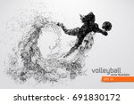 silhouette of volleyball player. | Shutterstock .eps vector #691830172