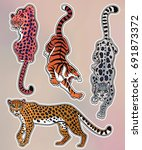 set of wild cat designs.... | Shutterstock .eps vector #691873372