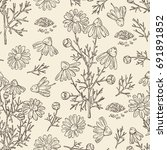 seamless pattern with chamomile ... | Shutterstock .eps vector #691891852