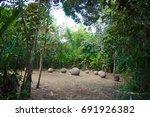 precolumbian chiefdom... | Shutterstock . vector #691926382
