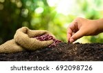 farmer hand planting and sowing ... | Shutterstock . vector #692098726