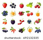 set branches berries and leaves ... | Shutterstock .eps vector #692132335