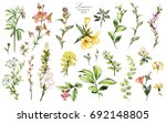 big set watercolor elements  ... | Shutterstock . vector #692148805