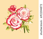 Watercolor White Red Roses....