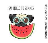 say hello to summer. vector... | Shutterstock .eps vector #692254318